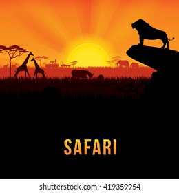 Vector illustration of Africa landscape with African lion standing on rock and sunset background. 