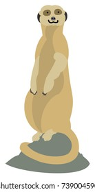Vector Illustration of an alert meerkat standing atop a rock