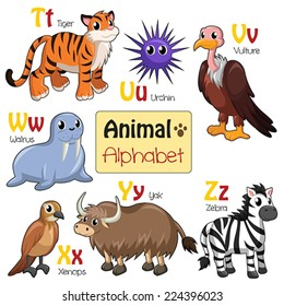 A vector illustration of alphabet animals from T to Z