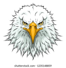 Vector illustration of American bald eagle head. Front view.