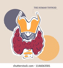 Vector illustration of an anatomical thyroid  for anatomical demonstration and any kind of card of flyers