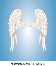 Vector illustration of angel wings on light blue background