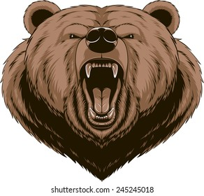 Vector illustration, Angry bear head mascot