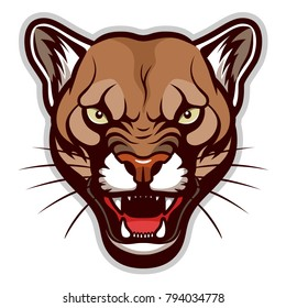 Vector illustration of angry cougar face. Can be used as mascot.