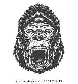 Vector illustration, angry gorilla head on a white background