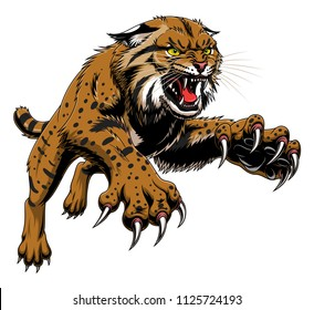 Vector illustration of angry leaping bobcat isolated on the white background.