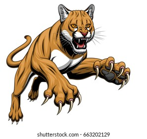 Vector illustration of angry leaping cougar isolated on the white background.