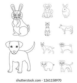 Vector illustration of animal and habitat sign. Collection of animal and farm stock vector illustration.