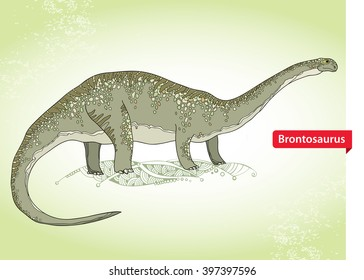 Vector illustration of Apatosaurus or Brontosaur or deseptive lizard on the green background. Series of prehistoric dinosaurs. Fossil animals and reptiles in contour style.