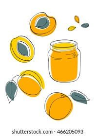 Vector illustration Apricot jam and fruits, yellow and orange