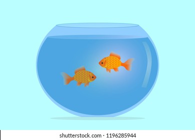 Vector illustration of aquarium for goldfish. Capacity for fish with water, for the maintenance of domesticated pet fish. For pet stores and tank sales. Background for advertising.