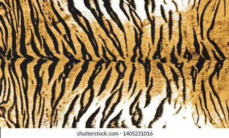 Vector Illustration Art of Indo-Chinese Tiger (Panthera Tigris Corbetti) Skin / Pelt for Background, Backdrop or Wallpaper.