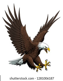 Vector illustration of attacking bald eagle.