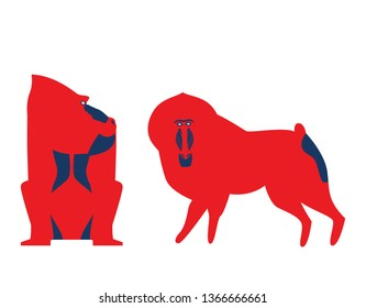 Vector illustration of baboon. Vector baboon in unusual bold colors. Baboon in differeent poses set