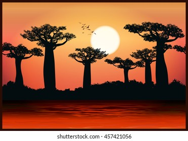 Vector illustration of baobab trees in the last rays of the sun. Seamless horizontally if needed
