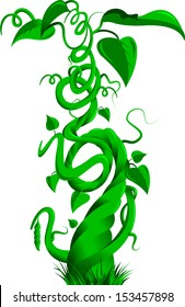 Vector illustration of a bean stalk on the fairy tale Jack and the Beanstalk