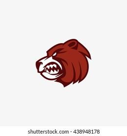 Vector illustration of bear head logo design template. flat style