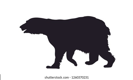 vector illustration of a bear that stands, drawing silhouette, vector, white background