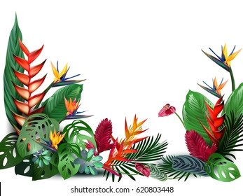 Vector illustration of beautiful flora plants,Tropical flowers in tropical forests among exotic foliage, vines, flowers.South America, Central Africa, Southeast Asia and Australia.