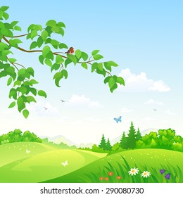 Vector illustration of a beautiful summer rolling landscape with a branch