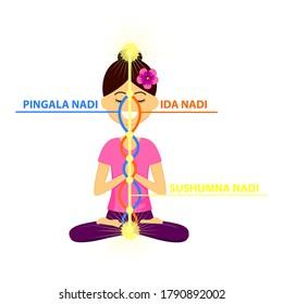 Vector illustration of beautiful woman character sitting in yoga pose. The three main nadis: ida, pingala, and sushumna. Energy channels.