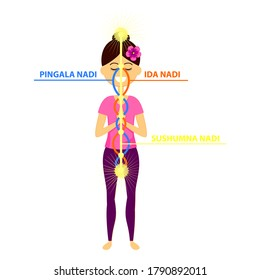 Vector illustration of beautiful woman character standing in yoga pose.The three main nadis: ida, pingala, and sushumna.