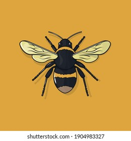 Vector illustration of a bee