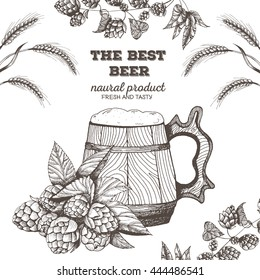 Vector illustration of beer. Raw material for brewing: branch of hops and barley. Pub menu. Beer set. wooden beer mug