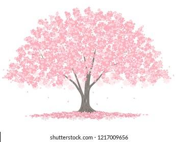 Vector illustration of a big cherry tree.