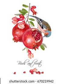 Vector illustration with bird on a pomegranate branch with fruits and flowers isolated on white. Design element for Wedding, birthday, halal cosmetics. Can be used for poster, invitation or scrapbook