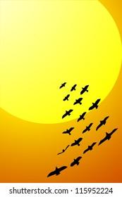 vector illustration: birds flying to sun