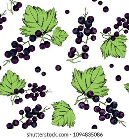 Vector illustration of black currants. Seamless pattern. Black currant collection on white background