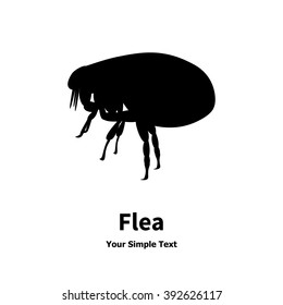 Vector illustration of black fleas icon. Isolated silhouette on a white background. Flea is a side view profile.