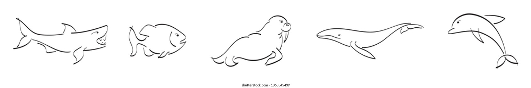 Vector illustration of black outline of sea animals. Logo of shark, fish, piranha, walrus, whale, dolphin. Ink calligraphy. A simple image with the pen. Black ribbons. Logos with animals.