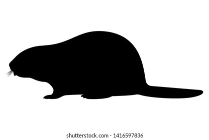 Vector illustration of a black silhouette of a beaver. Isolated white background. Beaver logo icon, side view profile.