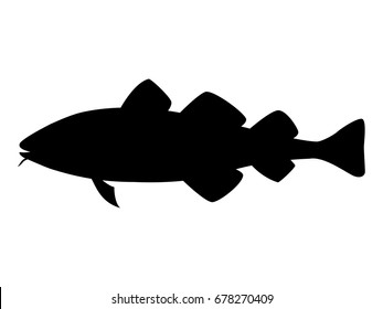 Vector illustration of a black silhouette codfish. Isolated white background. Icon fish cod side view profile.