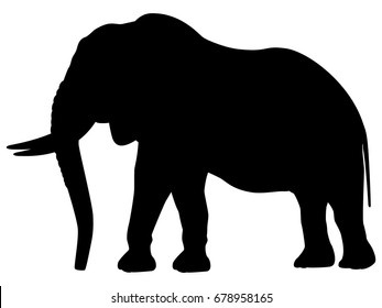 Vector illustration of a black silhouette elephant. Isolated white background. Icon elephant side view profile.