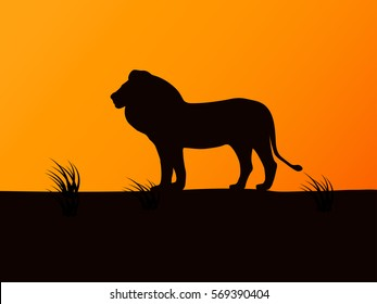 Vector illustration of black silhouette lion on the background of sunset. Side view, profile.