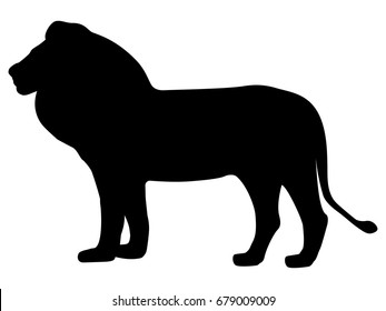 Vector illustration of a black silhouette lion. Isolated white background. Icon lion side view profile.