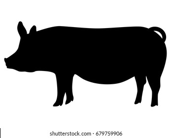 Vector illustration of a black silhouette pig. Isolated white background. Icon pig side view profile.