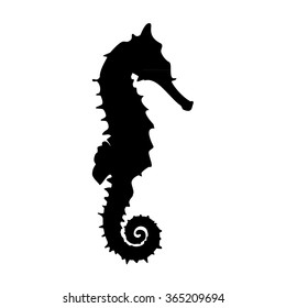 Vector illustration  black silhouette of sea horse. Seahorse icon isolated on white background.