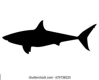 Vector illustration of a black silhouette shark. Isolated white background. Icon fish shark side view profile.
