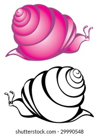 Vector illustration of black & white and purple snail.