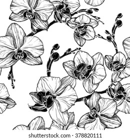 Vector illustration of black and white seamless pattern with orchid flowers