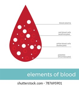 vector illustration blood elements. blood drop with main cells in it.