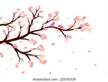 Vector illustration of blossom tree branch on white background