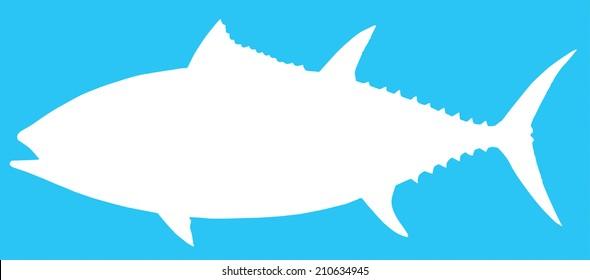 Vector illustration of a Blue Fin Tuna
