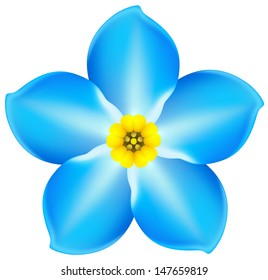 Vector illustration - blue isolated flower forget-me-not. Created with gradient mesh.
