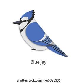 Vector illustration of blue jay.