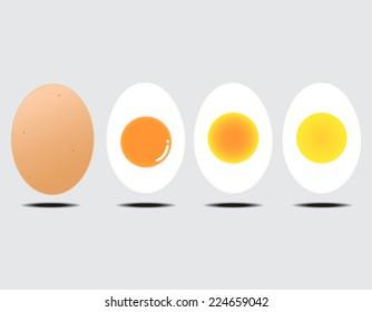 Vector illustration of boiled egg gray background